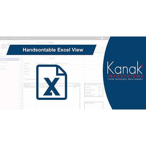 Handsontable Excel View